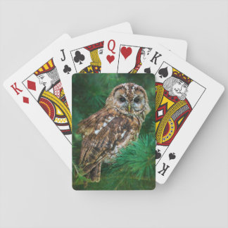 Playing cards tawny owl in a fir tree