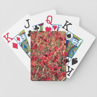 Playing Cards with Berries and Jumbo Index