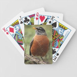 Playing Cards with E-Z Read Low Vision