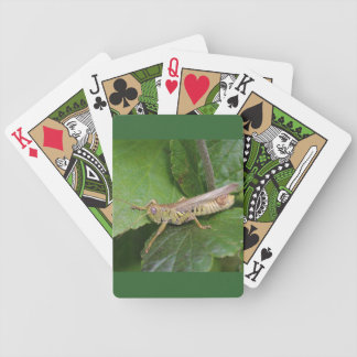 Playing Cards with Grasshopper