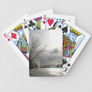 playing cards with photo of icy, winter landscape