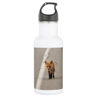 Playing Chicken with a Fox 18oz Water Bottle