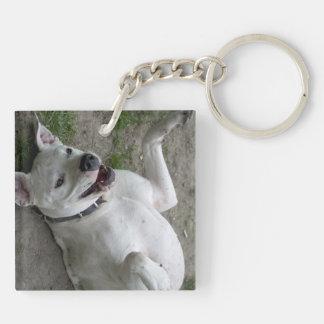 Playing Dogo Argentino Acrylic Keychain