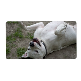 Playing Dogo Argentino Shipping Label