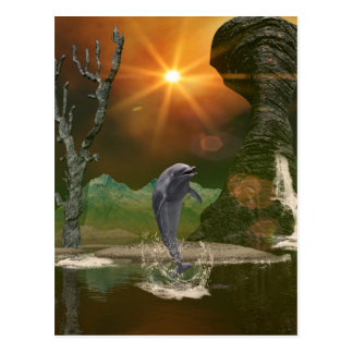 Playing dolphin in the beautiful sunset postcard