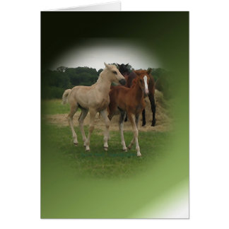 Playing Foals Crosstitched Card