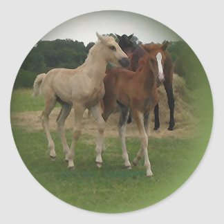 Playing Foals Crosstitched Classic Round Sticker