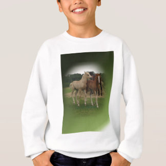 Playing Foals Crosstitched Sweatshirt