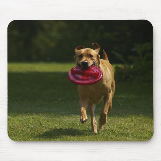 Playing Frisbee Mouse Pad
