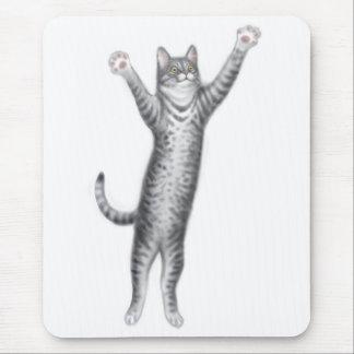 Playing Kitty Mousepad