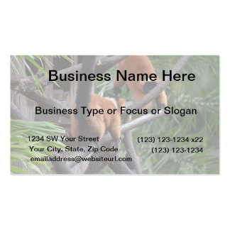 Playing Primates Red Bellied Lemurs Business Card Template