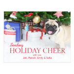 Playing Pug Dog Postcard