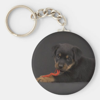 Playing Puppy 5 Key Chain