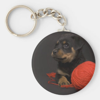 Playing Puppy 7 Keychain