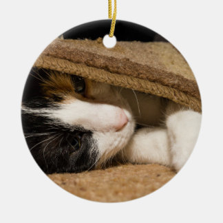 Playing Under The Rug Ceramic Ornament