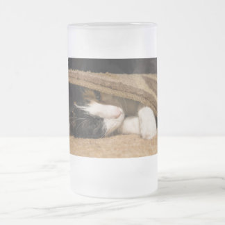 Playing Under The Rug Frosted Glass Beer Mug