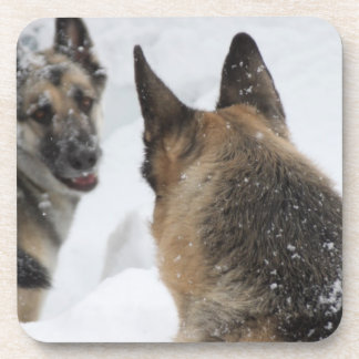 Playmates in the Snow Beverage Coaster
