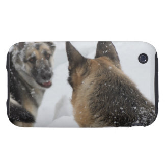 Playmates in the Snow iPhone 3 Tough Case