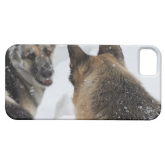 Playmates in the Snow iPhone SE/5/5s Case