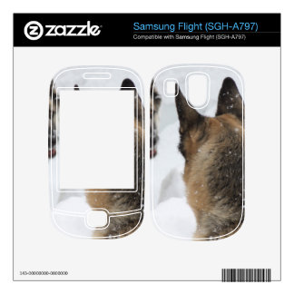 Playmates in the Snow Samsung Flight Decals