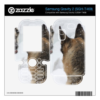 Playmates in the Snow Samsung Gravity 2 Skins