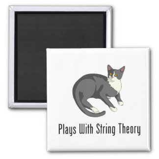 Plays With String Theory 2 Inch Square Magnet