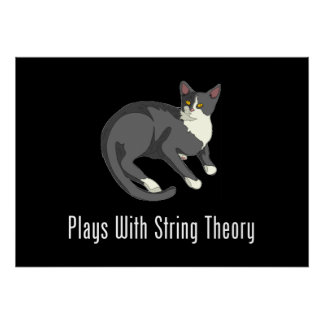 Plays With String Theory - Meow! Poster
