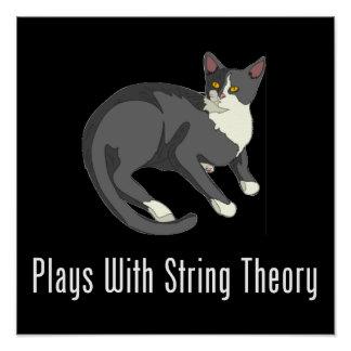 Plays With String Theory Poster
