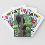 Playtime Playing Cards