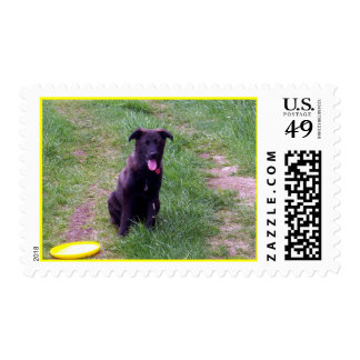 Playtime Stamp