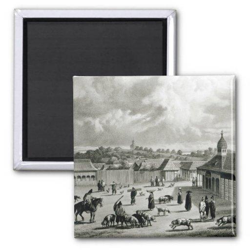 Plaza de San Carlos de Chiloe, 1835] Iman De Frigorífico