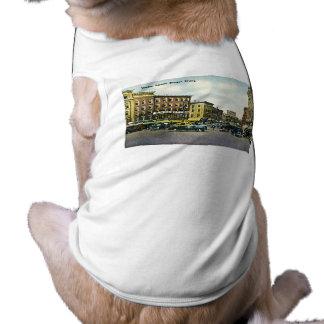 Plaza del mercado Bangor Maine Camisetas De Perro