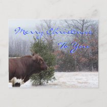 PLB Merry Christmas-customize Holiday Postcard