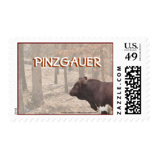 PLB-Stamp-customize Postage