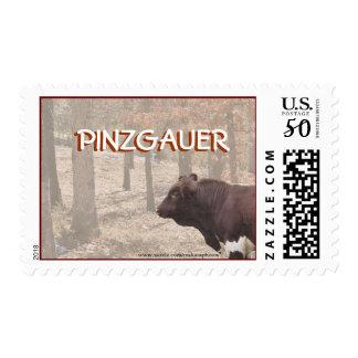 PLB-Stamp-customize Postage