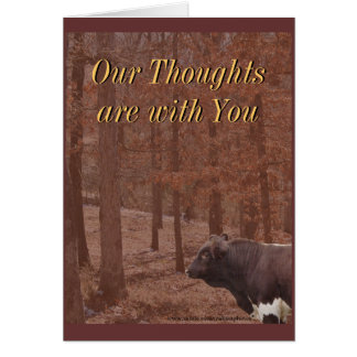 PLB Sympathy-or any occasion Cards