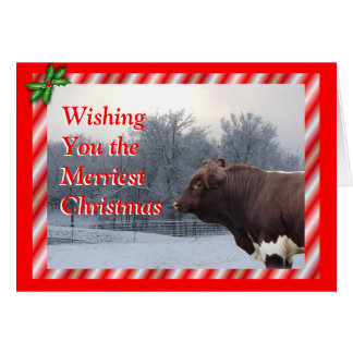 PLBChristmasCard-customize Greeting Card