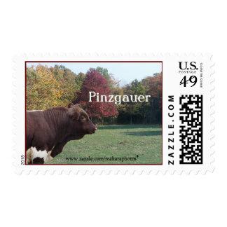 PLBStamp Postage Stamp