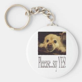 Pleading Dog Basic Round Button Keychain