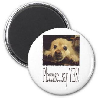Pleading Dog 2 Inch Round Magnet