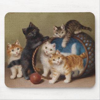 Pleasant companion mousepads