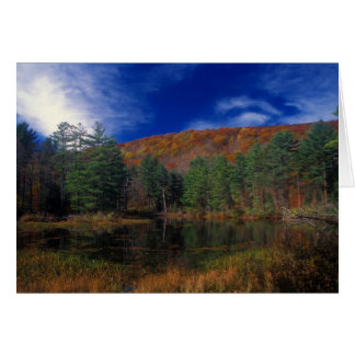 Pleasant Valley Wildlife Sanctuary Pike's Pond Greeting Card