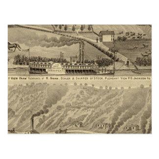 Pleasant View Farm Postcard