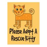 Please Adopt A Rescue Kitty Cat Gift Post Card