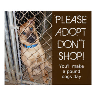 """Please Adopt Don't Shop"" Adopt A Pound Dog Poster"