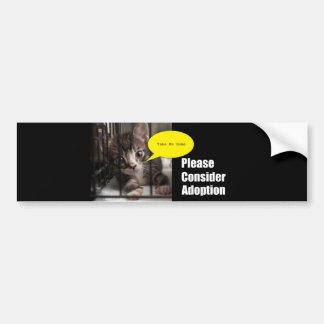 Please Adopt Me Bumper Sticker