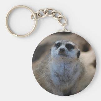 Please? Basic Round Button Keychain