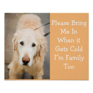 Please Bring Me In, When It's Cold Winter Poster