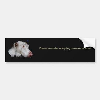 Please consider adopting a rescue ani... bumper sticker