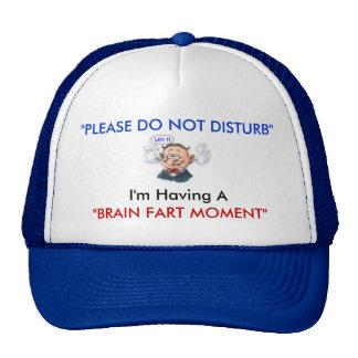 """PLEASE DO NOT DISTURB, Brain Fart Moment, UH !!, Hat"